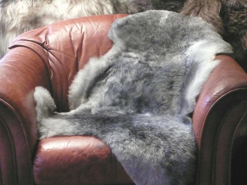 12. Grått, kort ull
